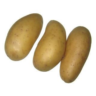 Kartoffeln  Ditta, fk.